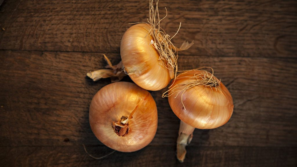 onions for a cough